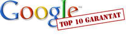 optimizare_site_top_10_google_garantat