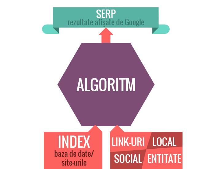 Cum funcționează Căutarea Google | Algoritmi de căutare